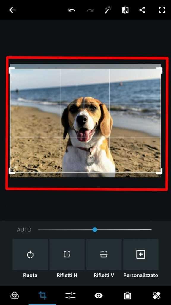 Come ridimensionare e ritagliare foto e immagini | Guida