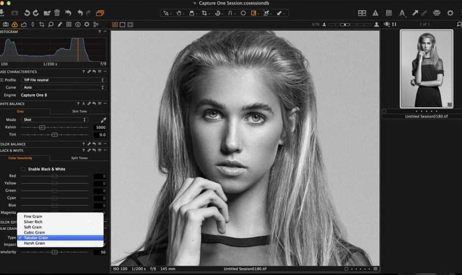 Recensione Capture One Pro Styles: Black & White Styles