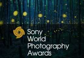 Sony World Photography Awards 2020: il vincitore per l'Italia