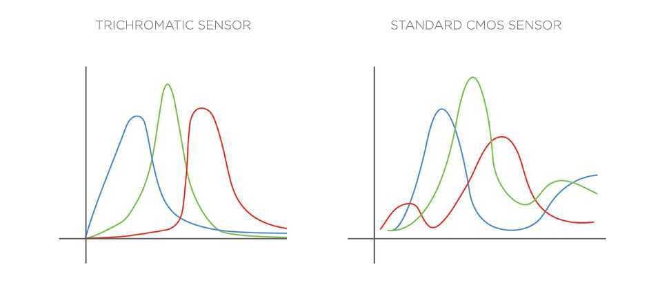 Recensione Phase One IQ3 Trichromatic 100MP medio formato