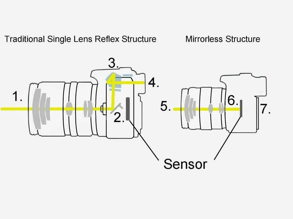 Come sono fatte e tecnologia fotocamere reflex Canon e Nikon