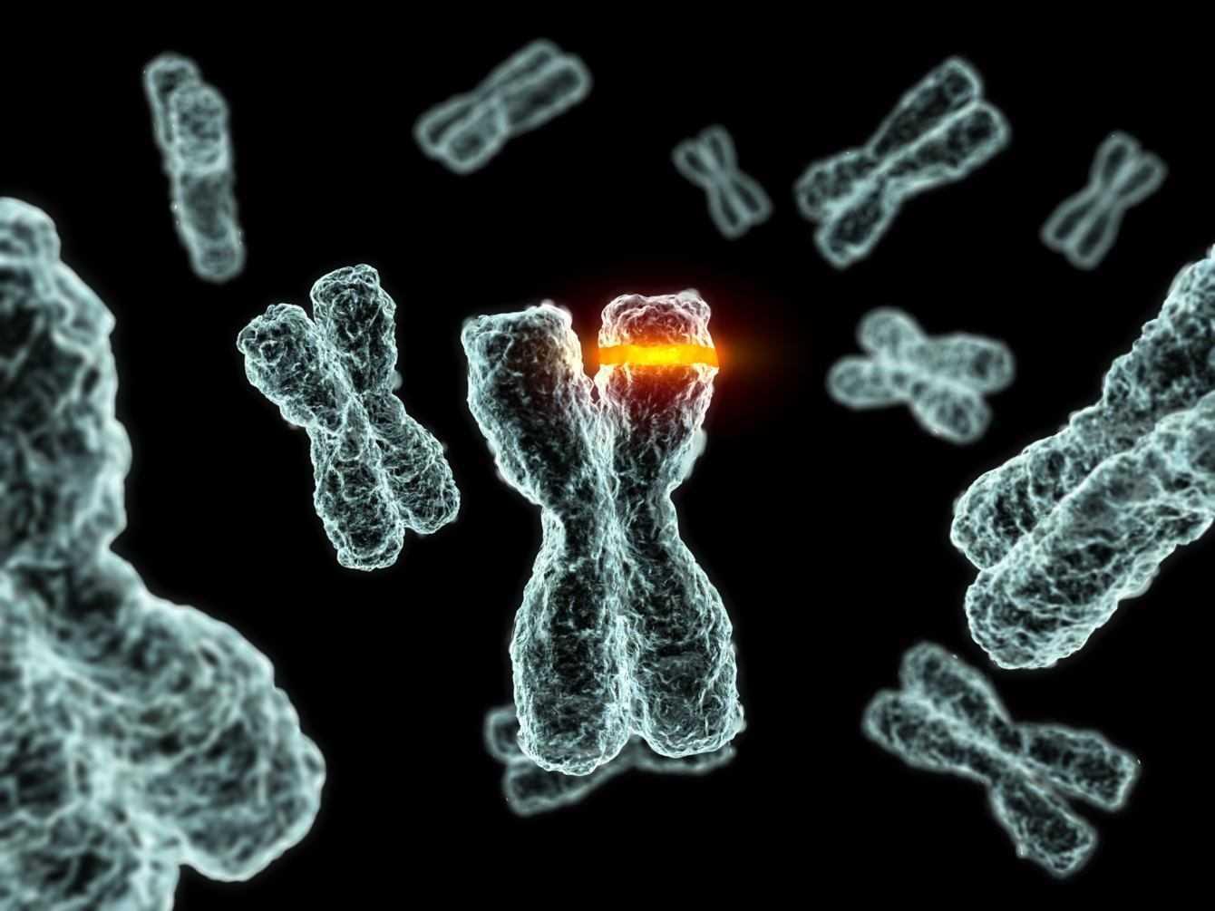 Tumori: scoperta una delle cause della loro progressione