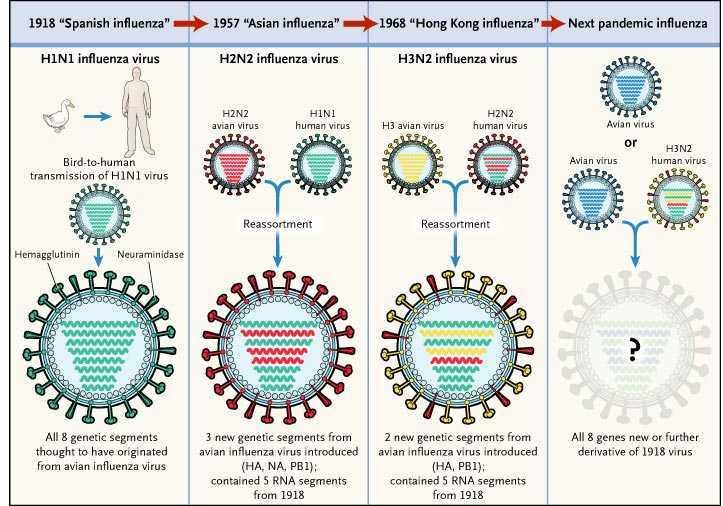 Vaccini: storia e risultati di 222 anni di prevenzione