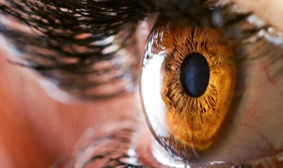 Biologia: coltivata la prima retina umana in laboratorio