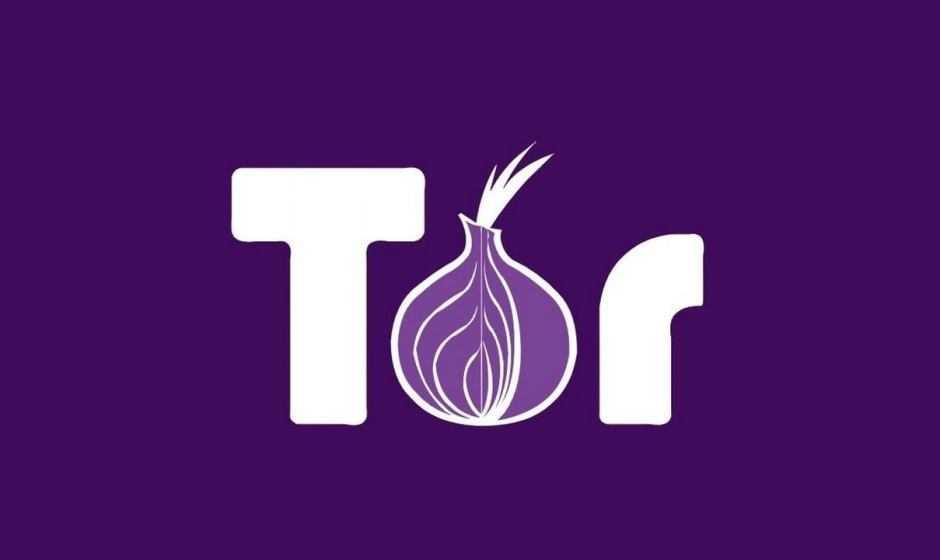 Come usare Tor per accedere al dark web | Guida
