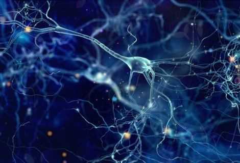 Morbo di Parkinson e ictus: un gel cura i danni al cervello | Medicina