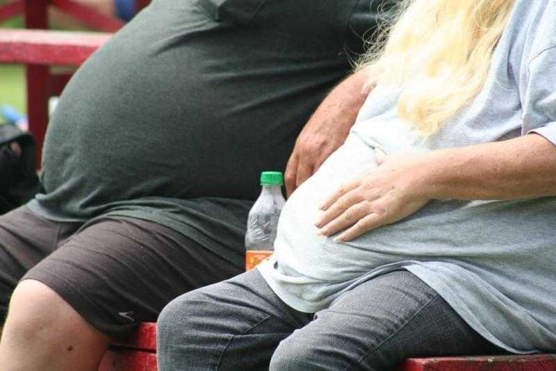 Medicina: una proteina fa dimagrire i topi obesi
