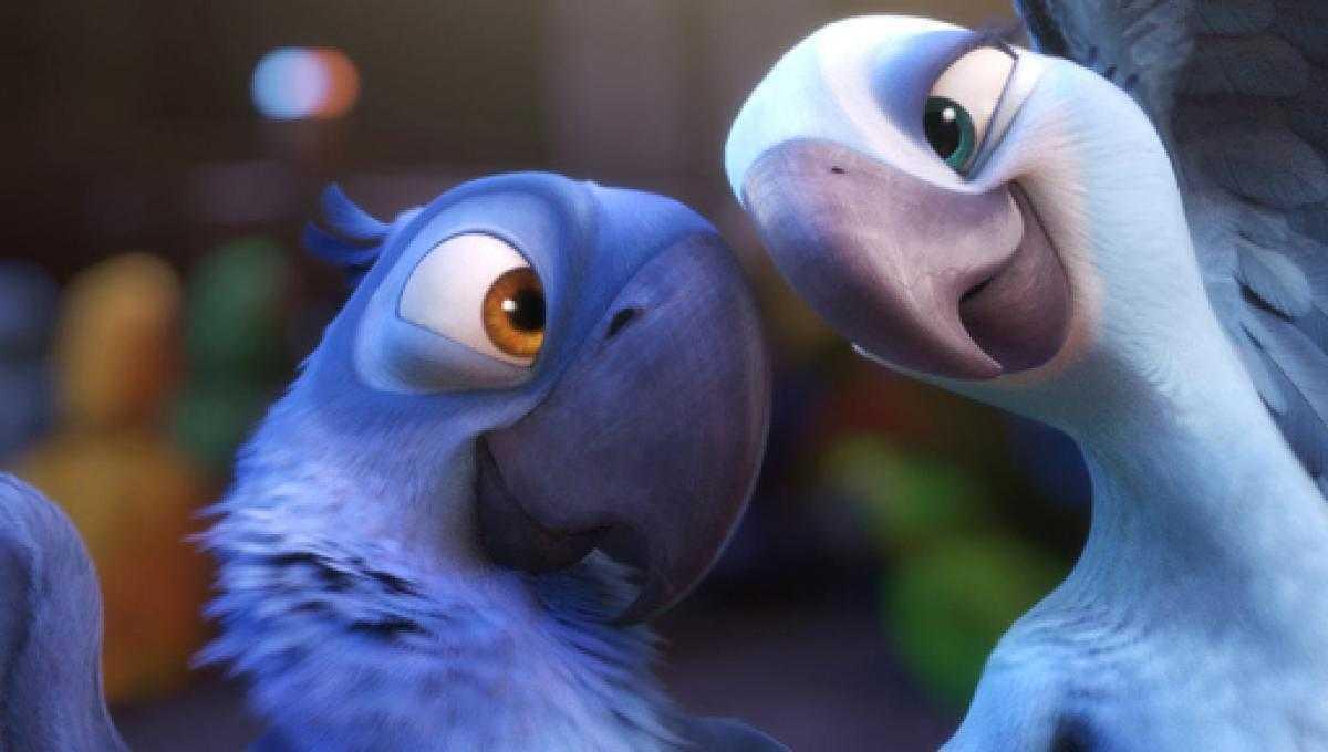 Ecologia: estinto in natura il pappagallo che ha ispirato il film Rio