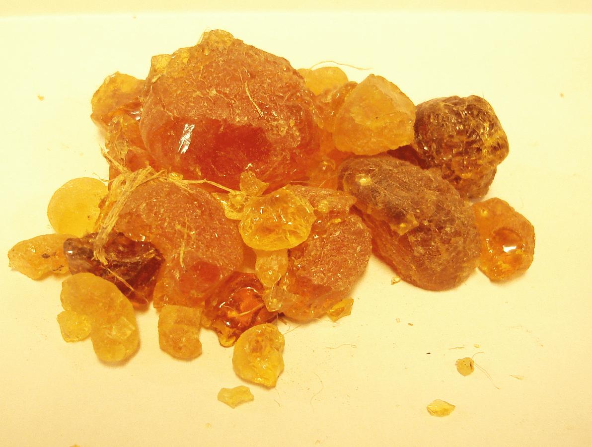 Scienza del cibo: caramelle gommose, fabbrica degli orrori o del piacere?
