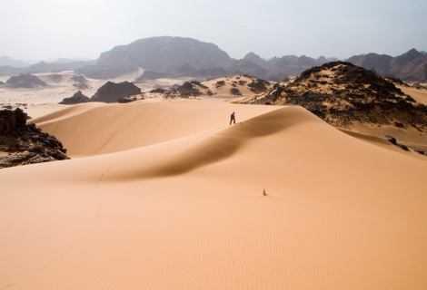 Ambiente: il deserto del Sahara rifiorisce ogni 20.000 anni