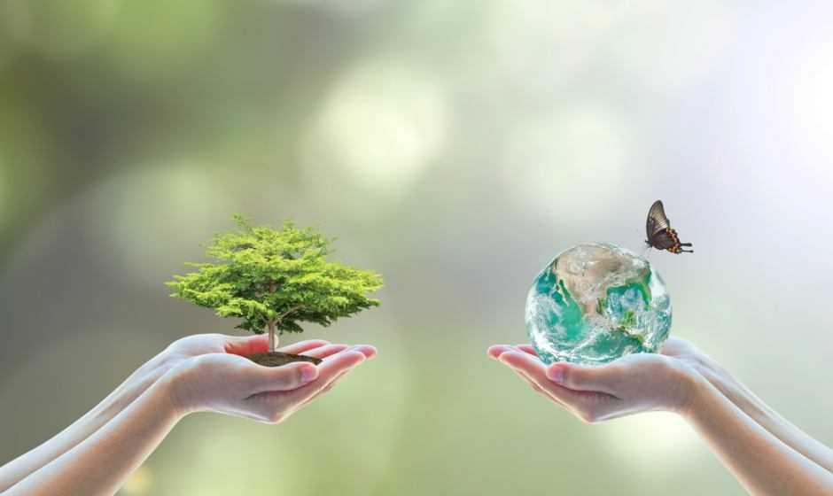 Biodiversità: siamo al collasso del sistema di produzione alimentare