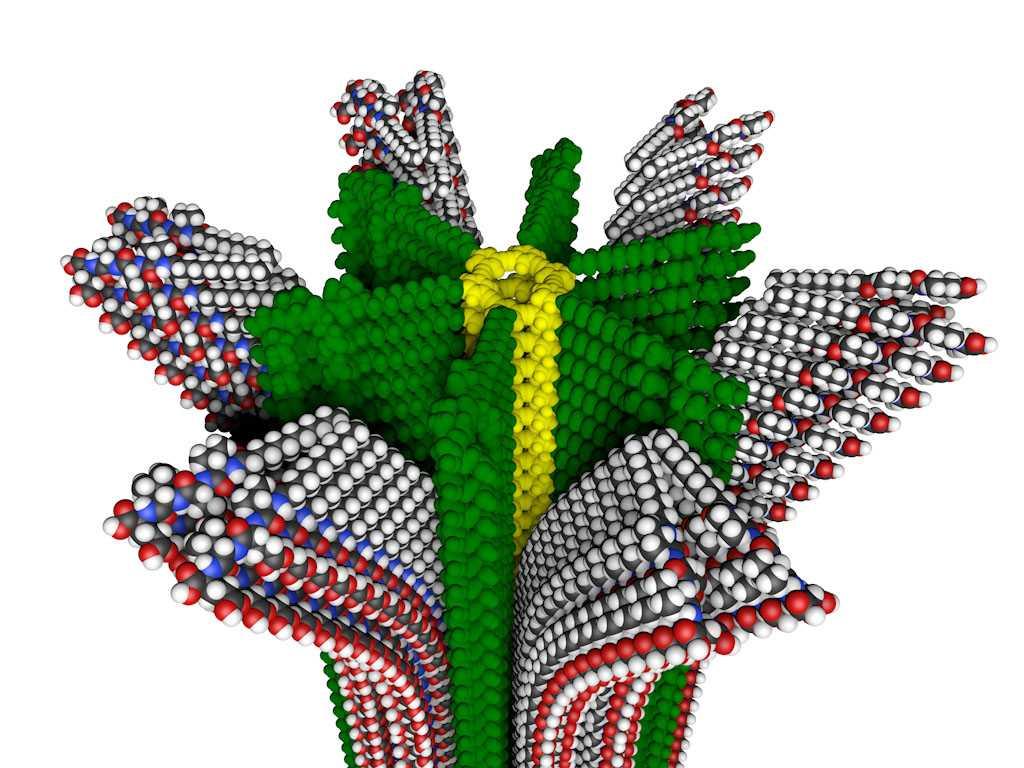 Biologia: dai batteri enzimi per riciclare la plastica