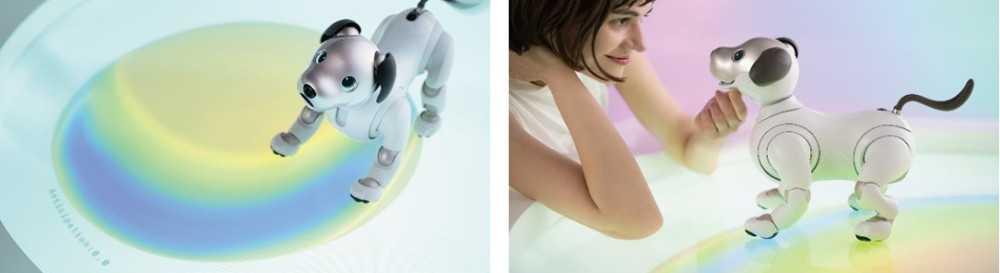 Nel futuro della robotica e dell'AI a Design Week con Sony