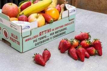 Packaging alimentare: intelligente o attivo