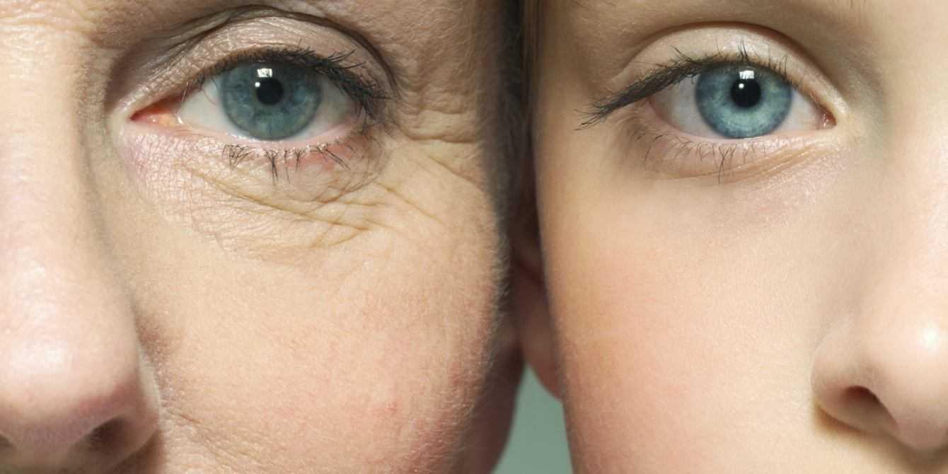 Medicina: proteine anti-invecchiamento per pelle e cervello