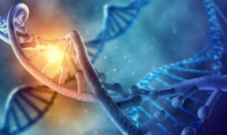 DNA Tumori nel sangue: rilevato da AI | Medicina