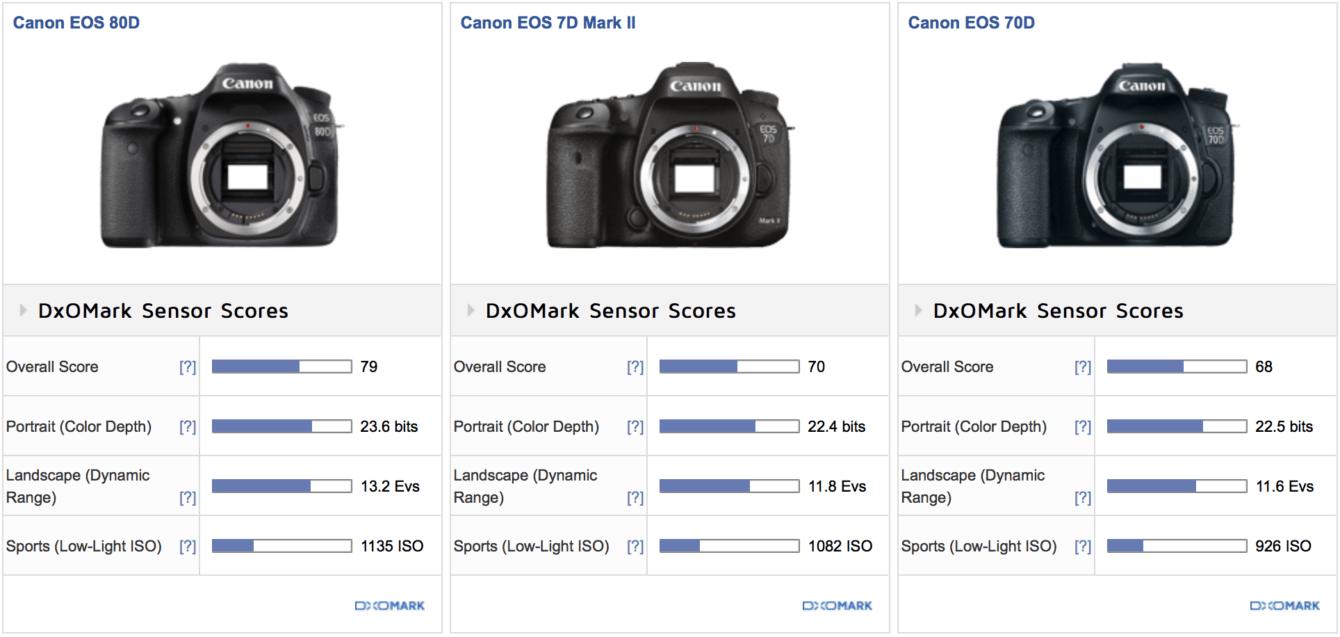 Canon EOS 90D: le prime specifiche della reflex APS-C?