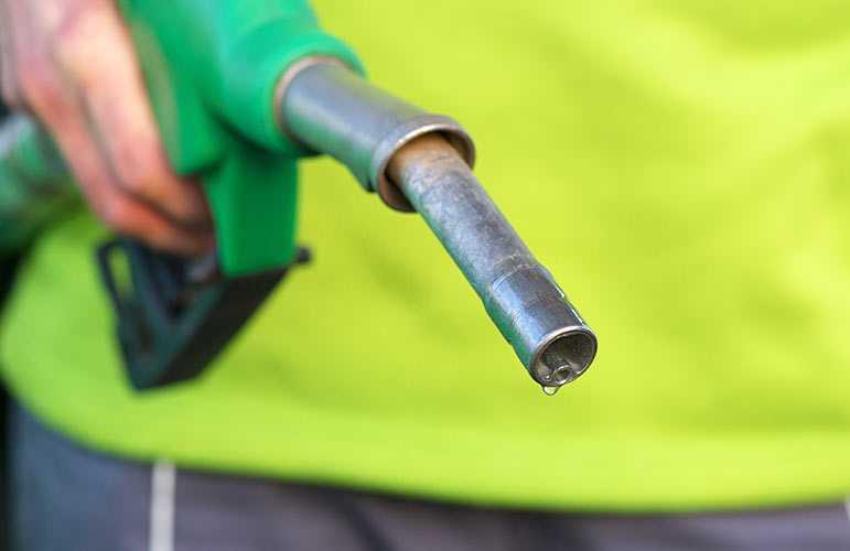 Biodiesel: prodotto a partire dalle microalghe