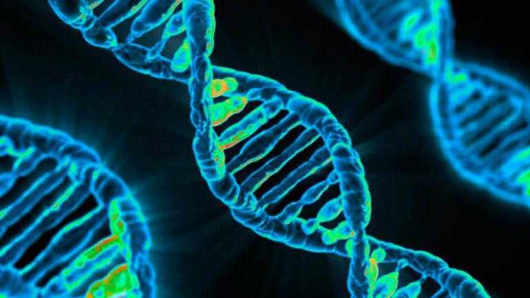 Gemelle modificate in Cina: l'epilogo sull'editing del DNA umano
