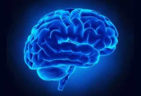 Cervello: fiocchi di grafene ne controllano l'attività | Medicina
