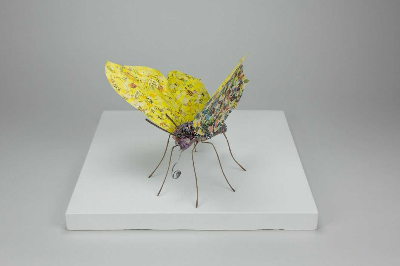 Libri: le meravigliose creazioni di Cecilia Levy