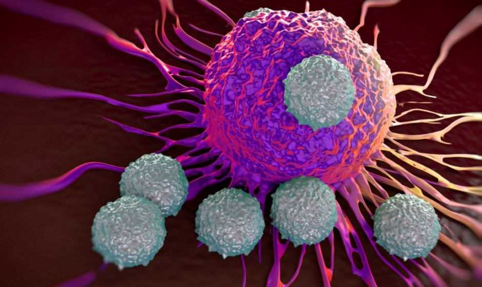 Tumori: nuova immunoterapia sviluppata in Cina | Medicina