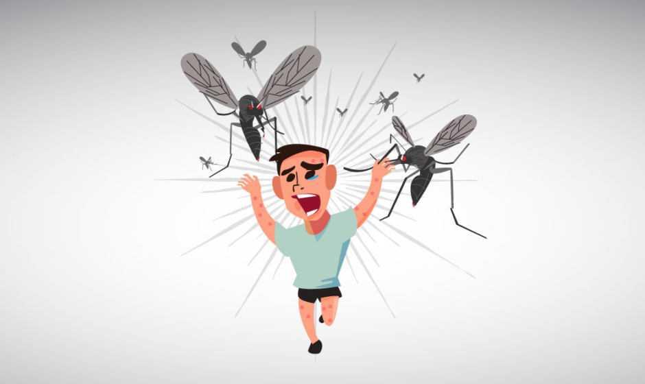 Zanzare tigre e malaria: tracciato il profilo della malattia   Biologia