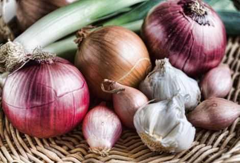 Tumore al seno: cipolla e aglio riducono i rischi   Medicina