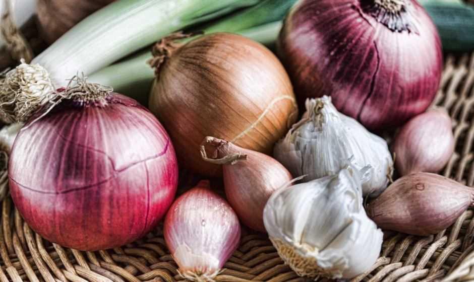 Tumore al seno: cipolla e aglio riducono i rischi | Medicina