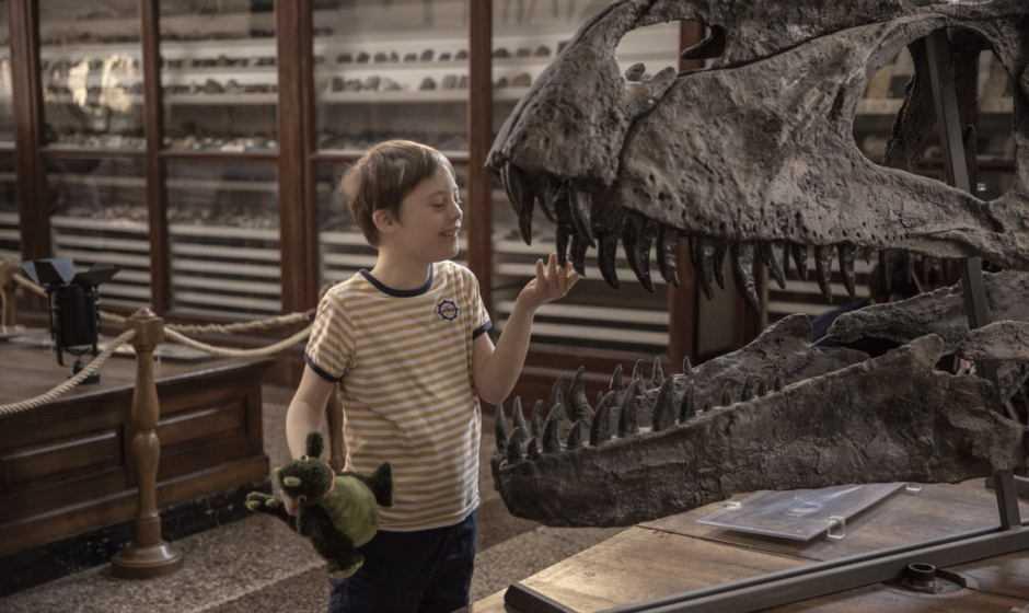 Mio fratello rincorre i dinosauri vince il premio Young Audience