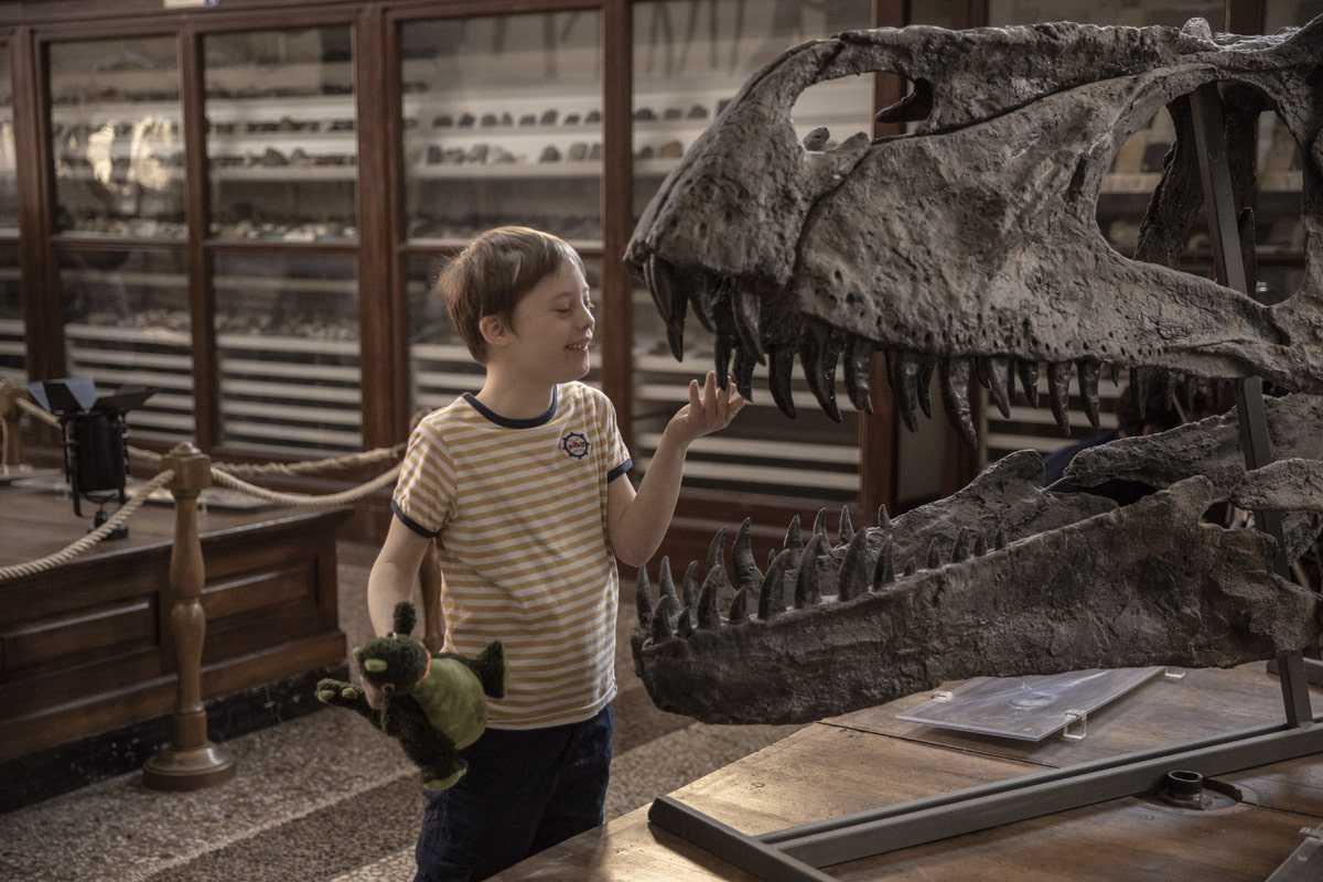 Recensione Mio fratello rincorre i dinosauri: positiva diversità