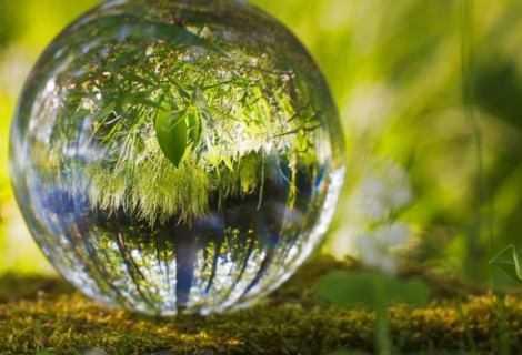 Decreto Legge Clima: le parole di Slow Food
