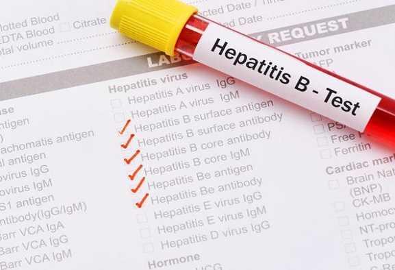Epatite B cronica: molecola riattiva le difese   Biologia
