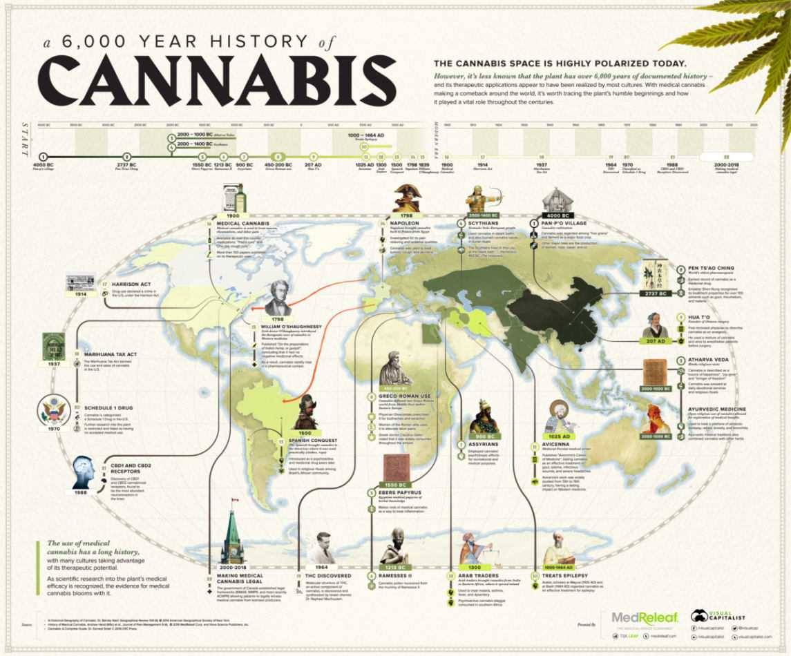 Cannabis terapeutica: utile contro i disturbi mentali? | Medicina