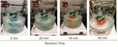 Ecco la foglia che trasforma la CO2 in carburante | Biologia