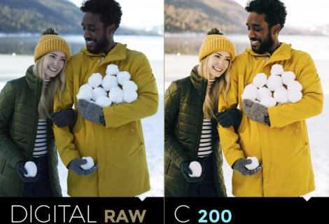 Fujicolor Everyday Original: tre nuovi preset dal sapore naturale