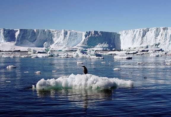 Antartide e Artico: anche i poli sono in crisi