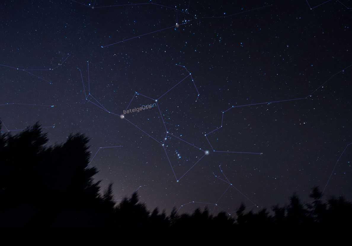 Betelgeuse: stella prossima all'esplosione? | Astronomia