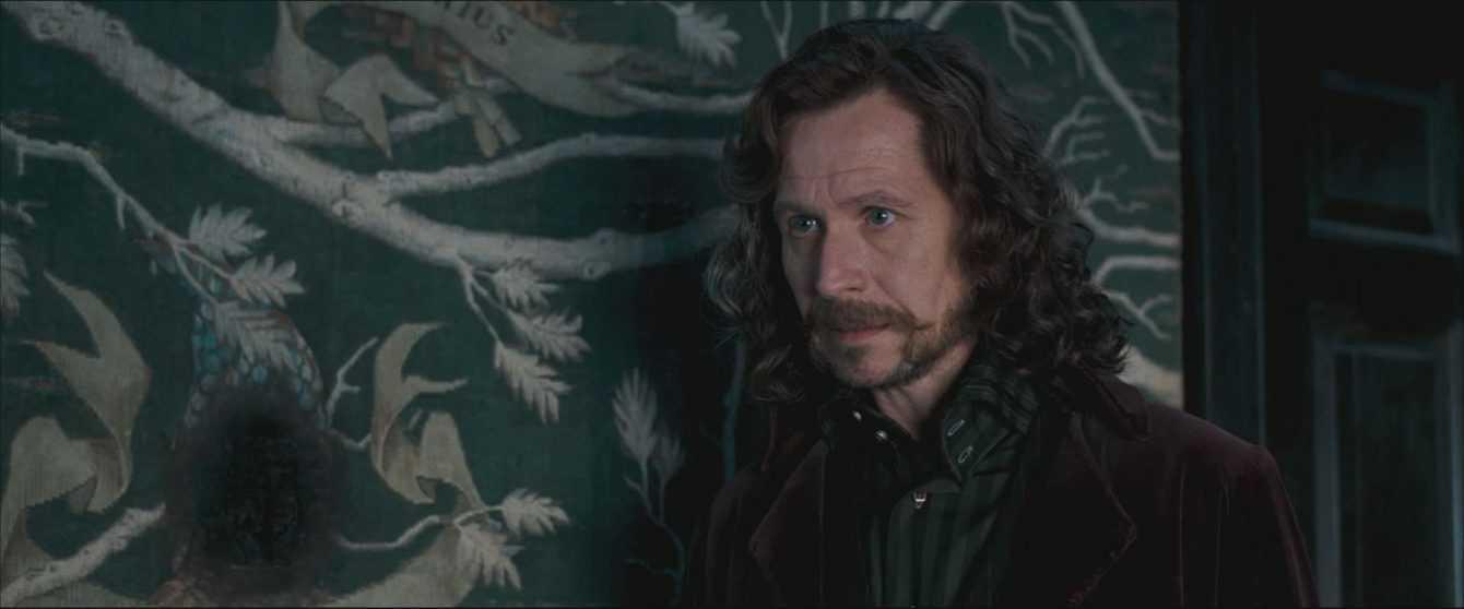 Harry Potter e l'ordine della fenice: curiosità e recensione
