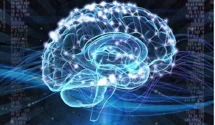 Neuroni riprogrammati per la lotta alla sclerosi multipla | Medicina