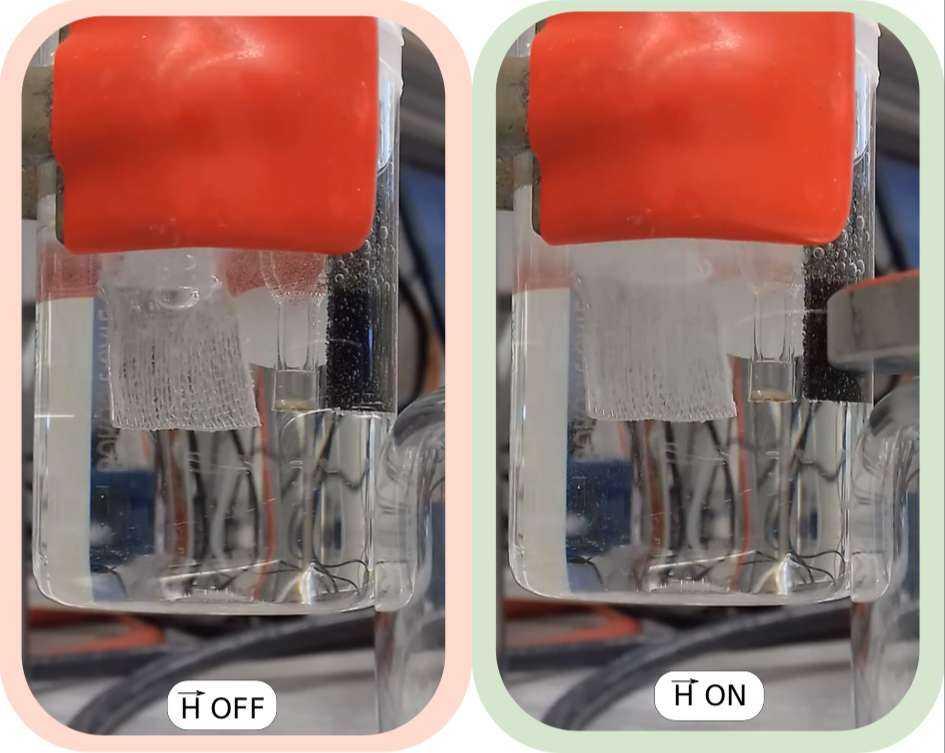 Idrogeno ed energia: nuovo impiego dei campi magnetici
