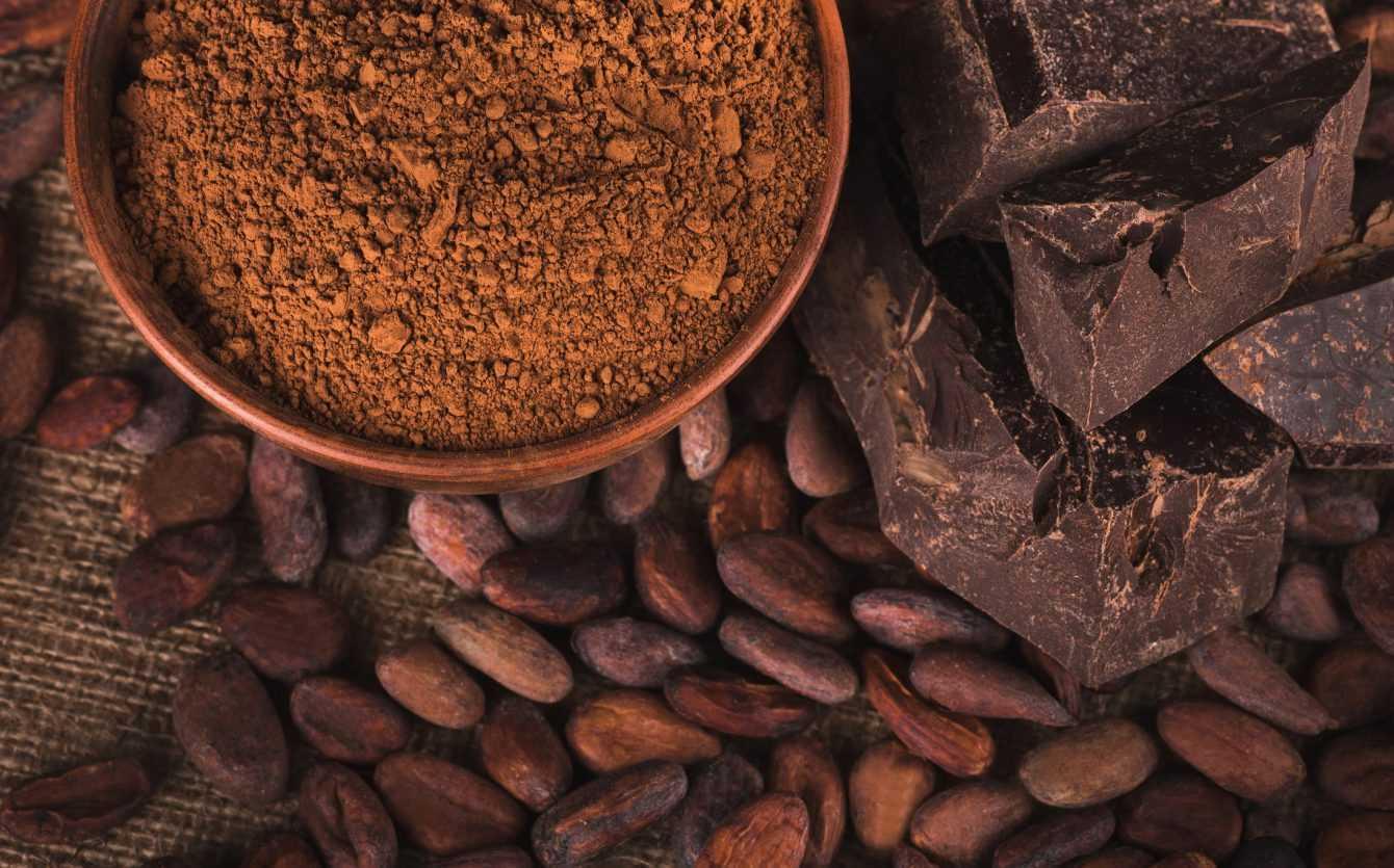 Origine del cioccolato: tecniche per tracciarne la provenienza