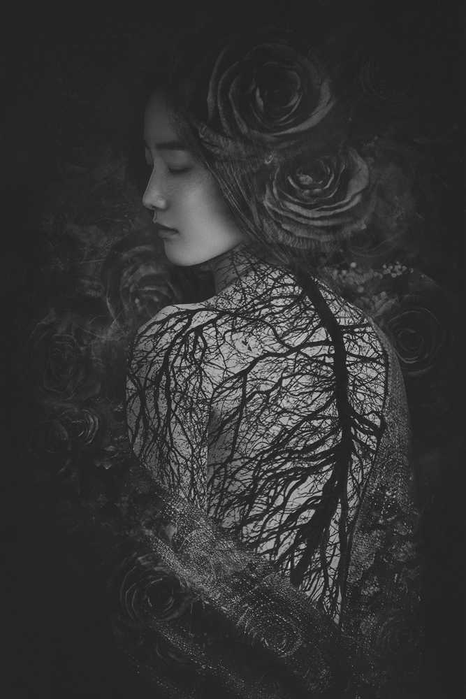 La potenza visiva nella fusione di fotografia e pittura | Intervista a Suxing Zhang