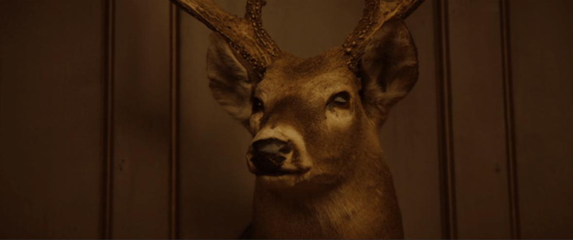 Jordan Peele: un horror sociale | I registi del decennio