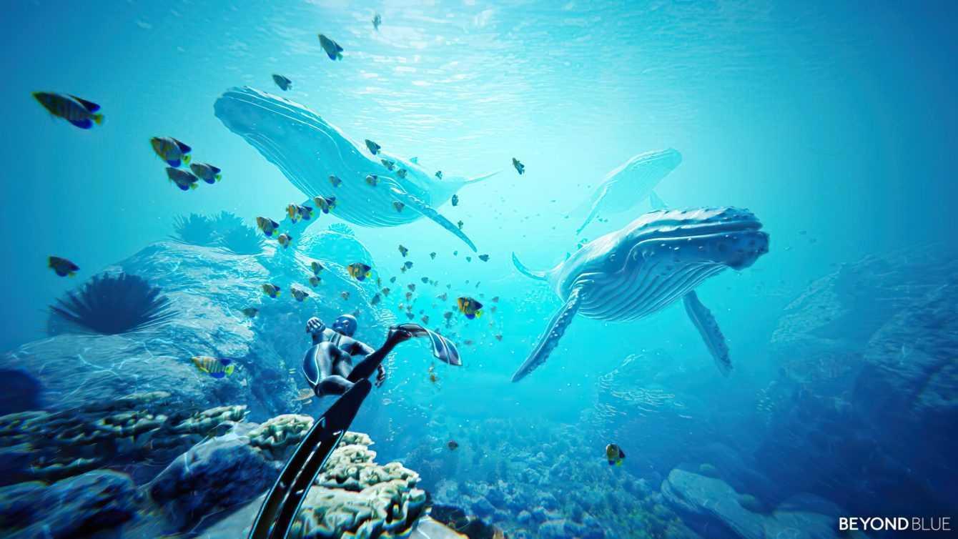 Recensione Beyond Blue, in fondo al mar!