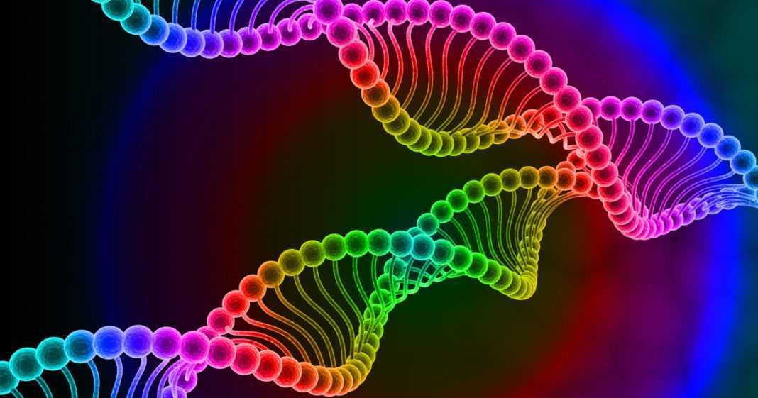La vita è emersa dal brodo primordiale tramite DNA o RNA?