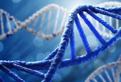 Mutazione individuata tra i brasiliani aumenta rischio di cancro