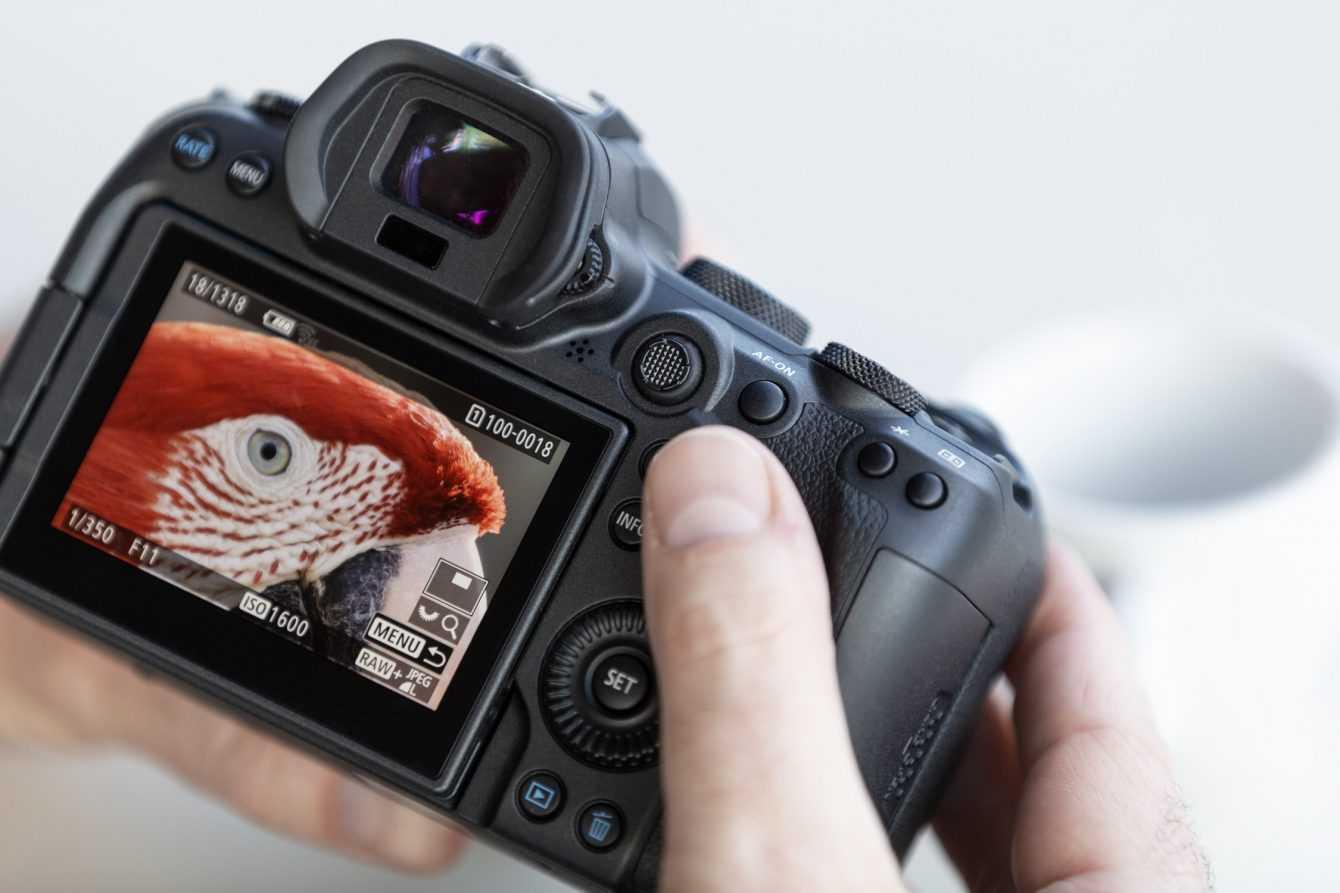 Canon EOS R5 e Canon EOS R6: la rivincita di Canon