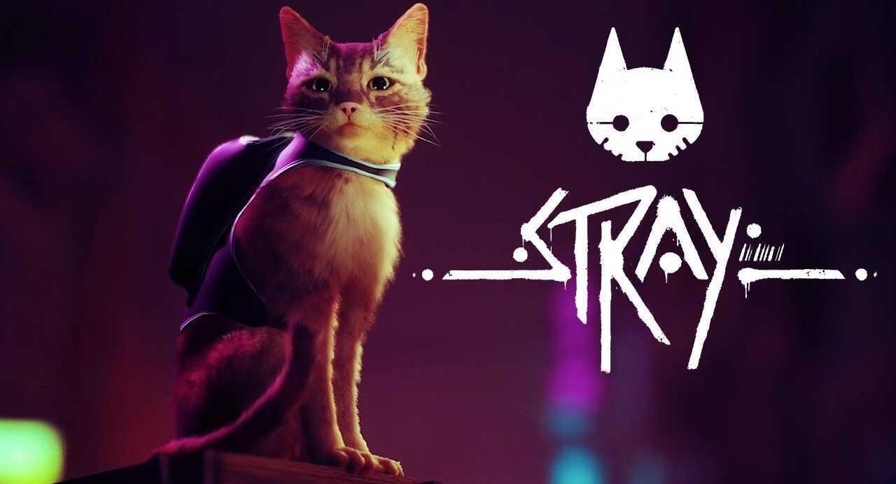 Stray: pubblicato il gameplay con un nuova data d'uscita
