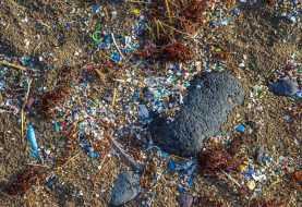Microplastica: trovata fin sulla cima dell'Everest